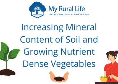 Increasing Mineral Content of Soil and Growing Nutrient Dense Vegetables